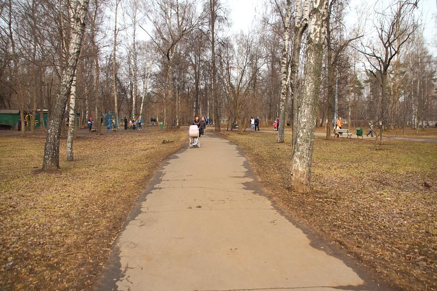 Северная часть парка Березовая роща, которую удалось отстоять жителям