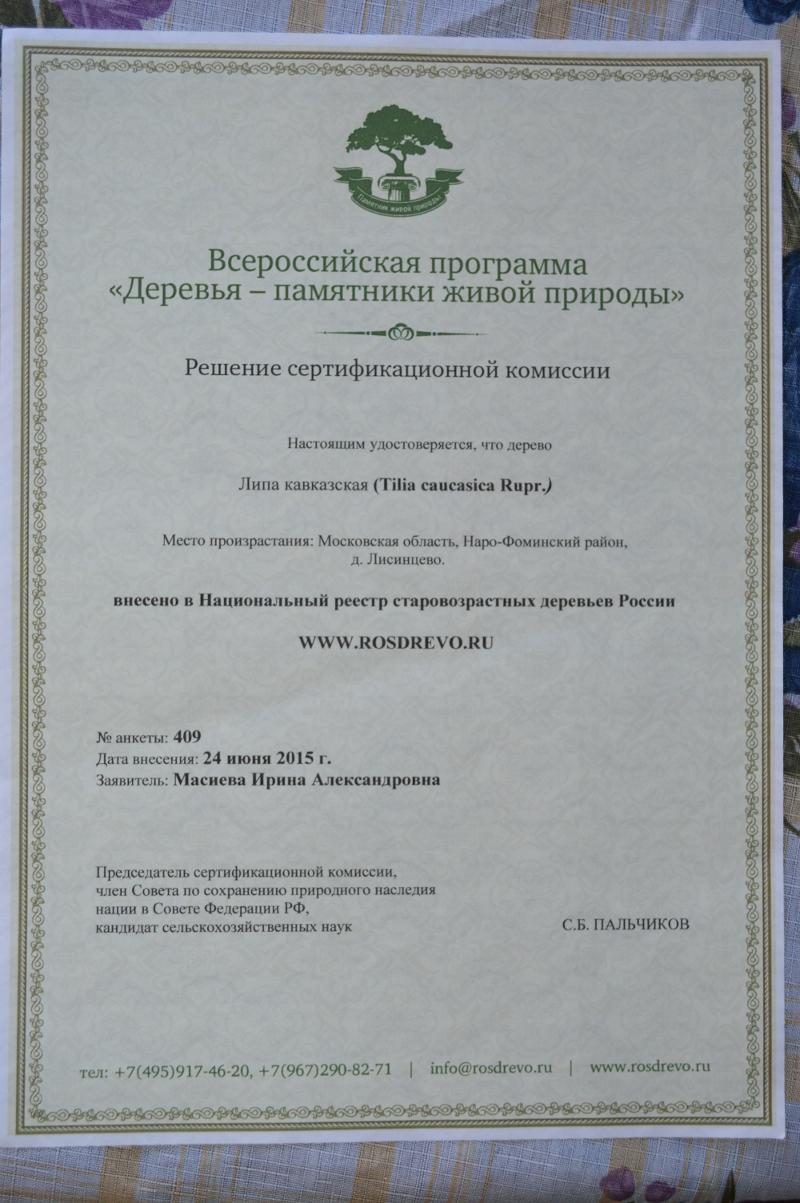 Решение сертификационной комиссии по кавказской липе в Лисинцево