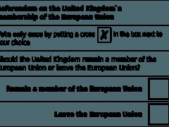 Образец бюллетеня референдума за отделение Великобритании от Евросоюза (Brexit)