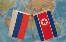 Флаги России и КНДР на фоне карты мира